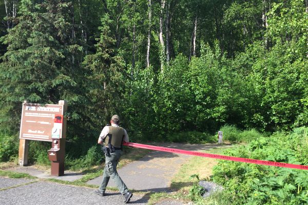 Chugach State Park ranger Keith Wilson closes the Bird Ridge trail Sunday night after a 16-year-old runner was mauled during a race earlier in the day. (Devin Kelly / Alaska Dispatch News)