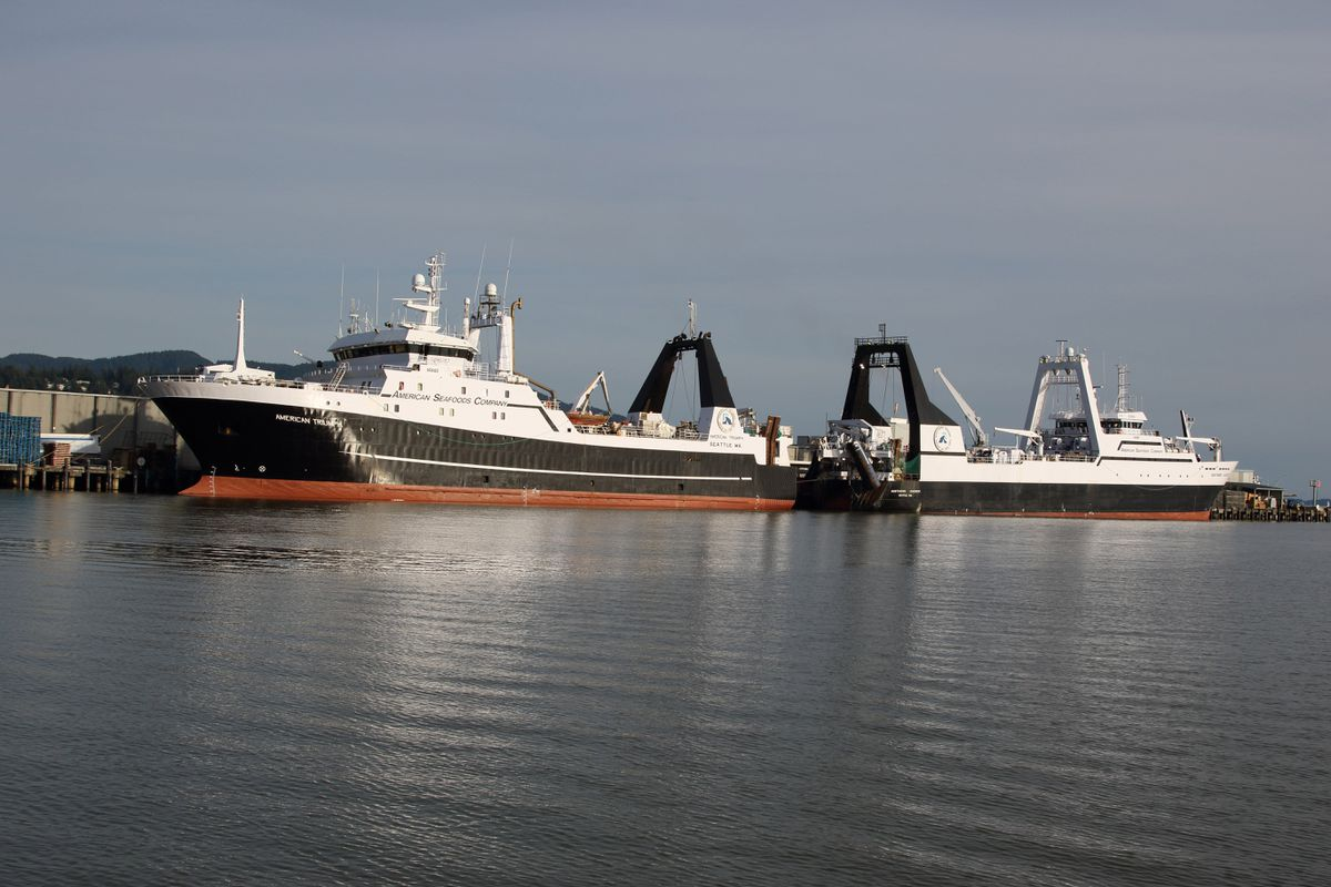 American Seafoods has reported that 85 crew members on the American Triumph, shown here moored in Bellingham, Wash., with the Northern Jaeger, have tested positive for COVID-19 in Unalaska. Both vessels are operated by Seattle-based American Seafoods. (Ron Judd/Seattle Times/TNS)