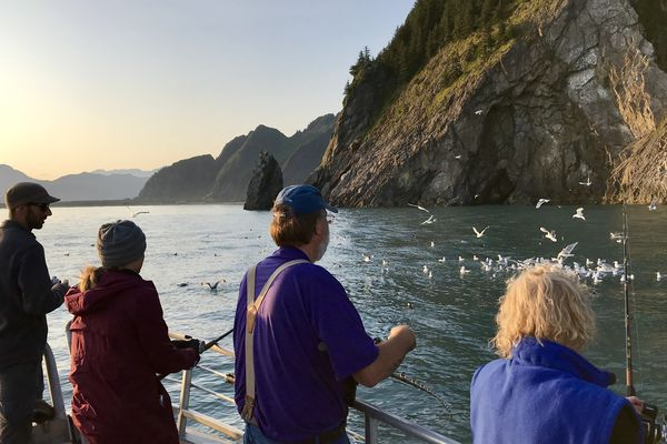 Seward anglers mooch for silver salmon near Callisto Head, near Bear Glacier during the 2019 Seward Silver Salmon Derby. (Photo provided by Seward Chamber of Commerce)