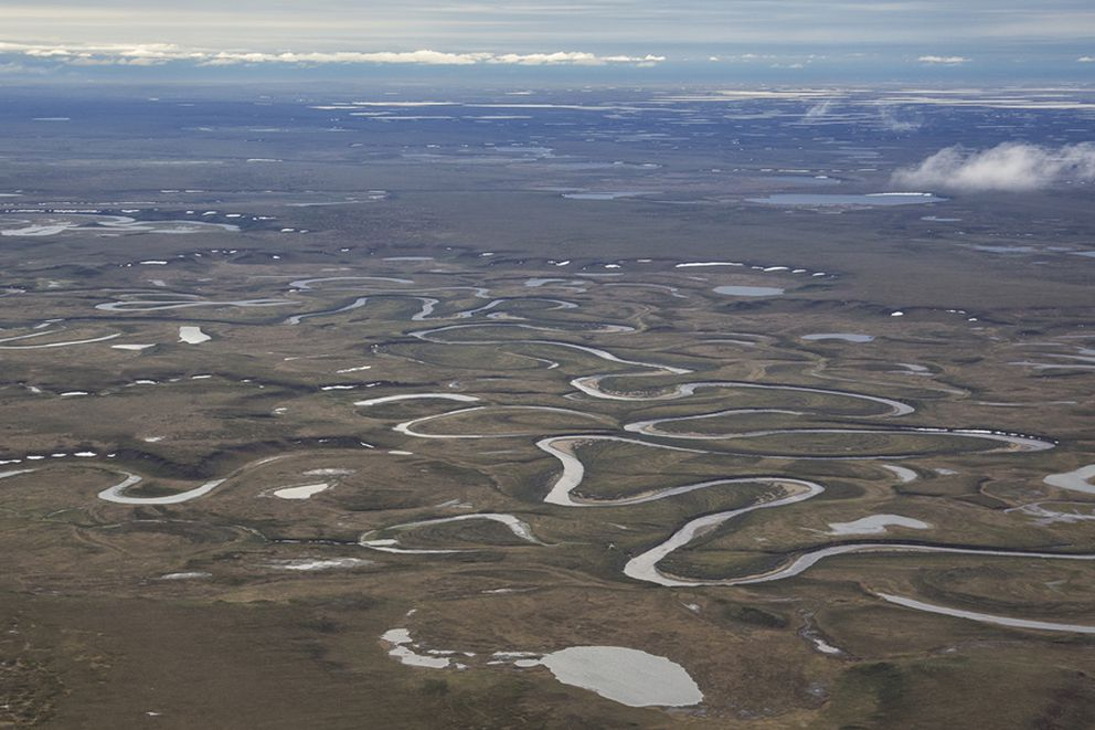 The northeast section of the National Petroleum Reserve-Alaska, or NPR-A. (Bureau of Land Management photo)