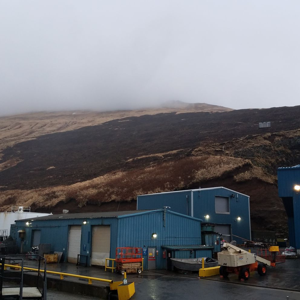 Scorched earthafter a fire near the Trident Seafoods plant in Akutan burned up the hillside (Photo by Bill Newberry)