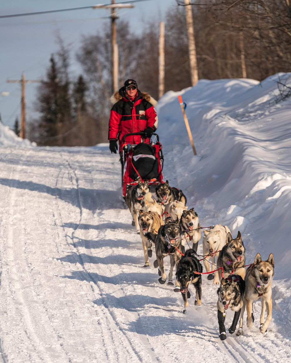 Laura Neese arrives in Takotna on Wednesday, March 11, 2020 during the Iditarod Trail Sled Dog Race. (Loren Holmes / ADN)