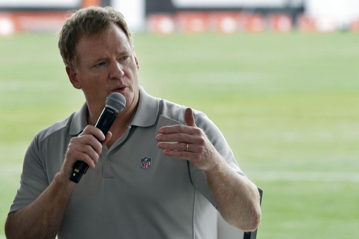 NFL Commissioner Roger Goodell. (AP Photo/Tony Dejak, file 2017)