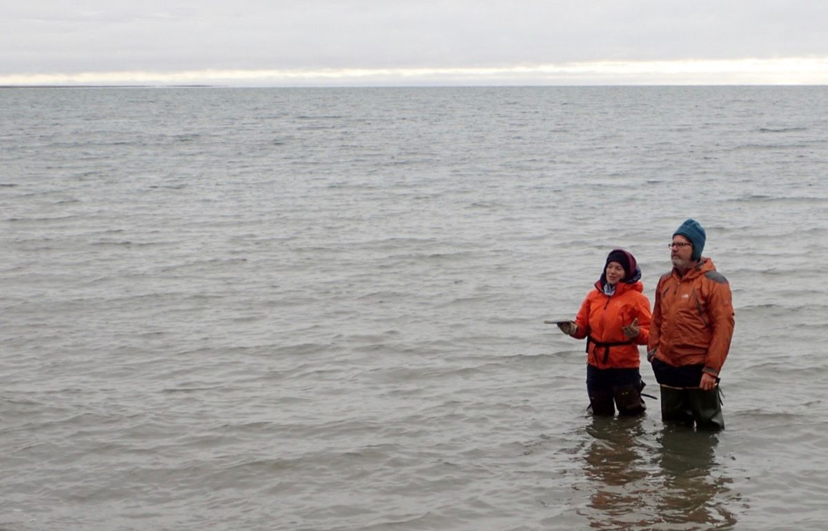 UAF researchers Louise Farquharson and Dan Mann stand in Teshekpuk Lake to ponder an ancient beach rising from its northern shore. Photo by Pam Groves.