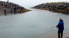 Fishing report: Homer's lagoon is poor man's charter boat
