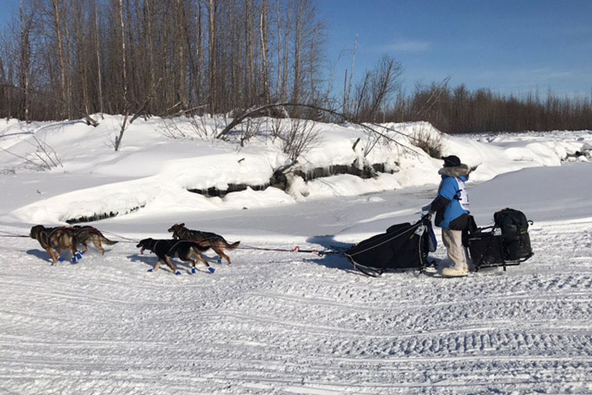 Rookie Brenda Mackey of Two Rivers, drives her dog team on the Susitna River during day one of the Iditarod Sled Dog Race on Sunday. (Bill Roth)