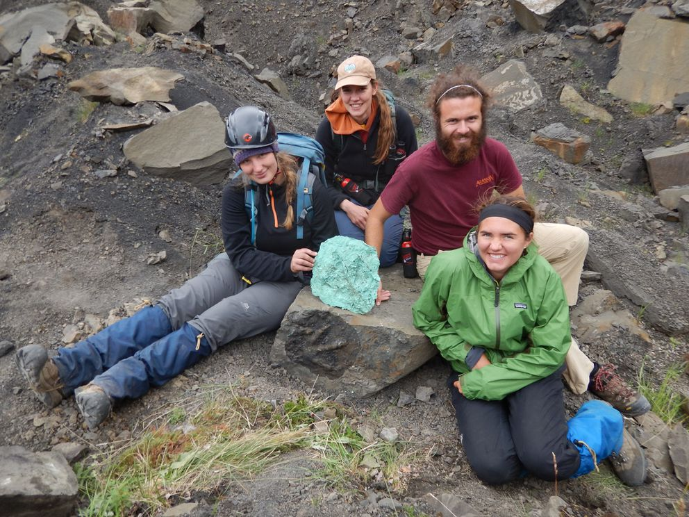 Students and staff pose with a freshly made silicone peel of a very well preserved meat-eating theropod dinosaur track in Denali National Park in July 2016. (From left) Heather MacFarlane, UA Museum of the North, Naomi Morris, Denali interpretive ranger, Nick Freymueller, University of New Mexico student, and Eliza Rorabaugh. (Pat Druckenmiller / UAMN)