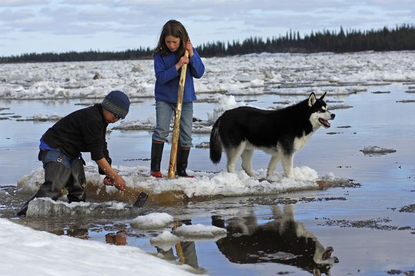 Twelve year old Kituq Williams and 11-year-old China Kantner play on the ice during a previous breakup in the Northwest Arctic while Worf the dog keeps an eye on things.