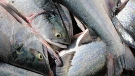 Fisheries politics was rough for all in 2015; let's at least have a working truce in 2016