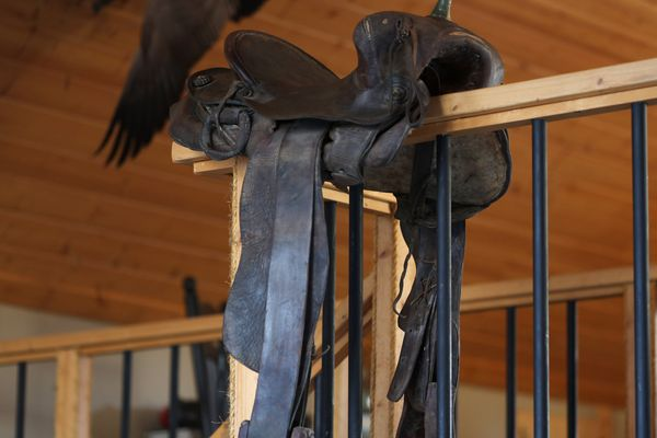 A 125-year-old saddle was just what Steve Meyer wanted, though he didn't know that until he got it. (Photo by Steve Meyer)