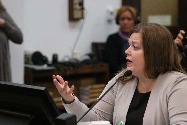 Anchorage Democratic Rep. Geran Tarr testifies Wednesday, February 28, 2018 before the House Judiciary Committee at the state Capitol in Juneau. She was speaking in support of House Bill 75, her proposal to allow family members and law enforcement to ask a judge to confiscate guns belonging to someone deemed a danger to themselves or others. (Nathaniel Herz / ADN)
