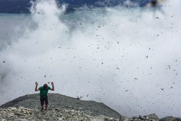 A man swats at bugs that swarmed at the top of Mount Marathon during the race Tuesday, July 4, 2017 in Seward. (Loren Holmes / Alaska Dispatch News)