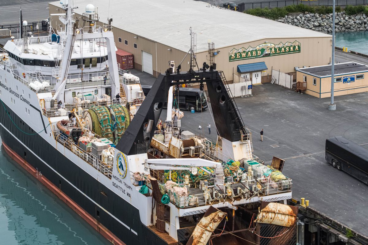 The American Triumph docks in Seward on Wednesday. American Seafoods, which operates the factory trawler, reported over the weekend that 85 crew members tested positive for COVID-19. The crew disembarked in Seward and was transported by private bus to Anchorage, where they will be isolated for further care. (Loren Holmes / ADN)