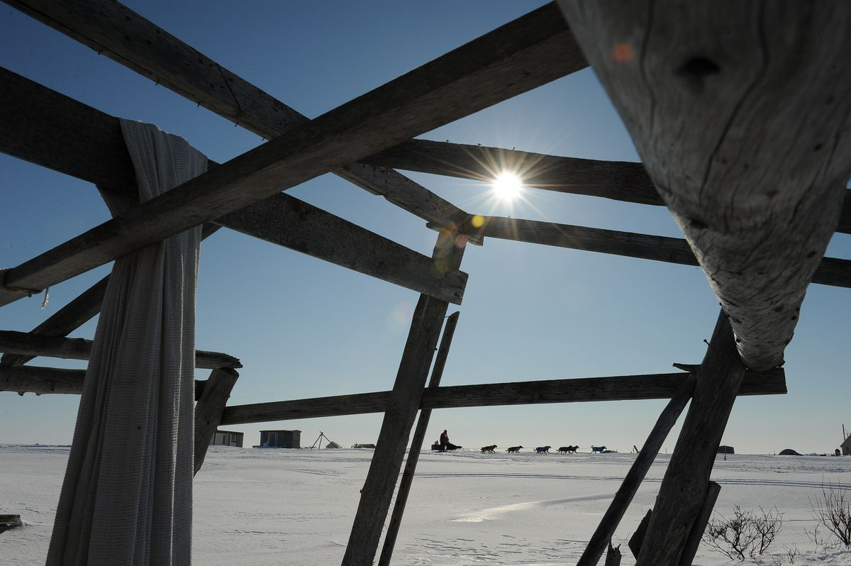 Ryan Redington passes by a fish-drying rack at a fish camp outside of Nome on Wednesday. (Bob Hallinen / Alaska Dispatch News)