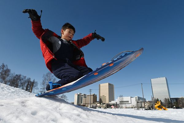 Jeremy Glass, 8, gets some air while sledding at Frontier Land Park near downtown Anchorage on Thursday, March 26, 2020. Glass is a second grade student and was having