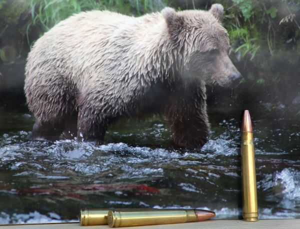 When hunting deer where a rifle shot is a dinner bell for brown bears, a heavier caliber like the .375 H&H can be a comfort. (Photo by Steve Meyer)