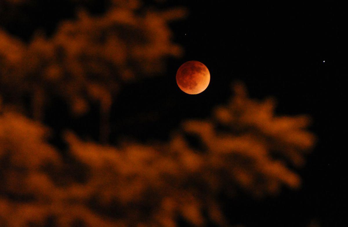 A total lunar eclipse reveals a