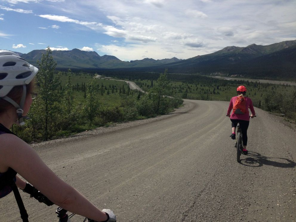 Jen Willette and Kalyn Simon bicycle through a section of the Denali National Park road between Sanctuary River and Teklanika campgroundlast weekend. (Photo by Alli Harvey)