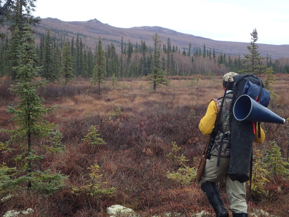 Bruno Grunau of Fairbanks hunts for moose in northern Alaska. (Photo by Ned Rozell)