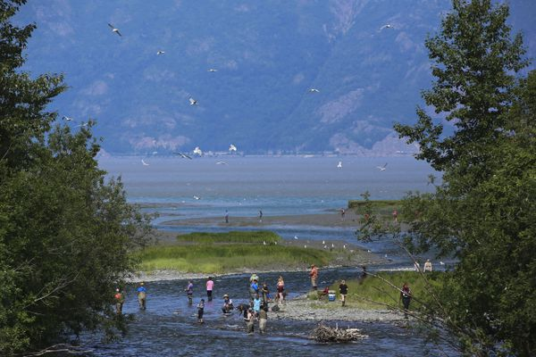 People fish along Resurrection Creek, on the edge of Turnagain Arm, in Hope on Saturday, July 17, 2021. (Emily Mesner / ADN)