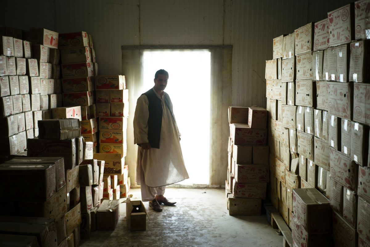 Rohollah Noori in 2015 in the refrigeration area of the Kandahar ice cream company he manages. The lack of electricity proved a challenge for his business. MUST CREDIT: Photo for The Washington Post by Lorenzo Tugnoli