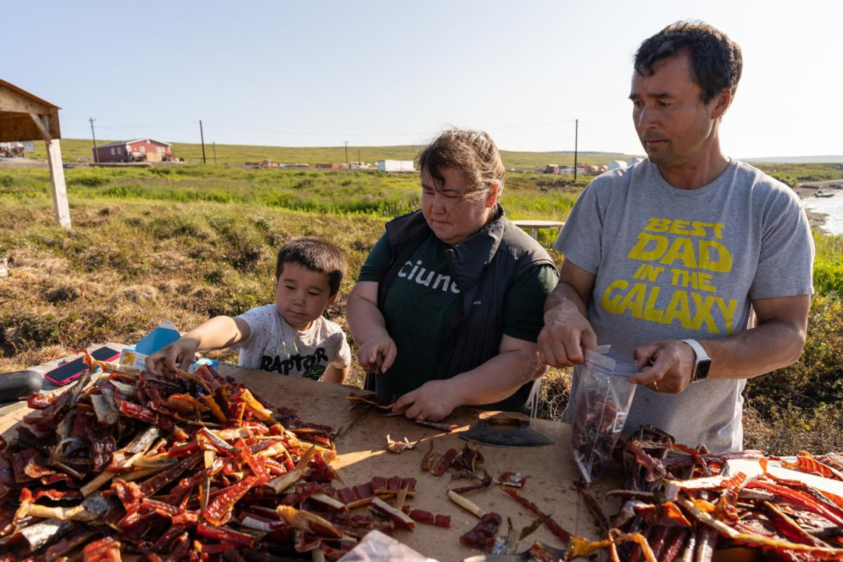 Jeffrey Charles Jr. grabs a quick snack while his parents, Lisa and Jeffrey Charles, cut strips near their smokehouse in Mertarvik, Alaska, on July 15, 2020. Lisa says that limited access to a grocery store has them eating more subsistence foods. (KATIE BASILE / KYUK)