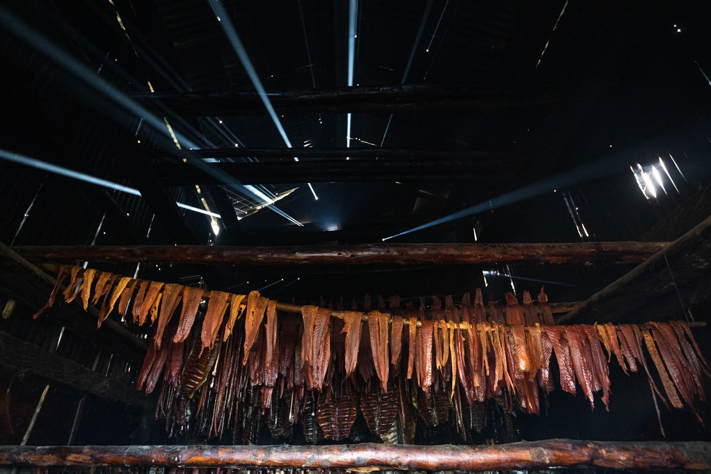 Light streams through holes in Willie Takumjenak's smokehouse as king and chum salmon dry on June 28, 2019, Russian Mission. (Loren Holmes / ADN)