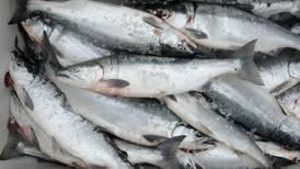 Copper River sockeye fishery closed again as sonar counts remain low