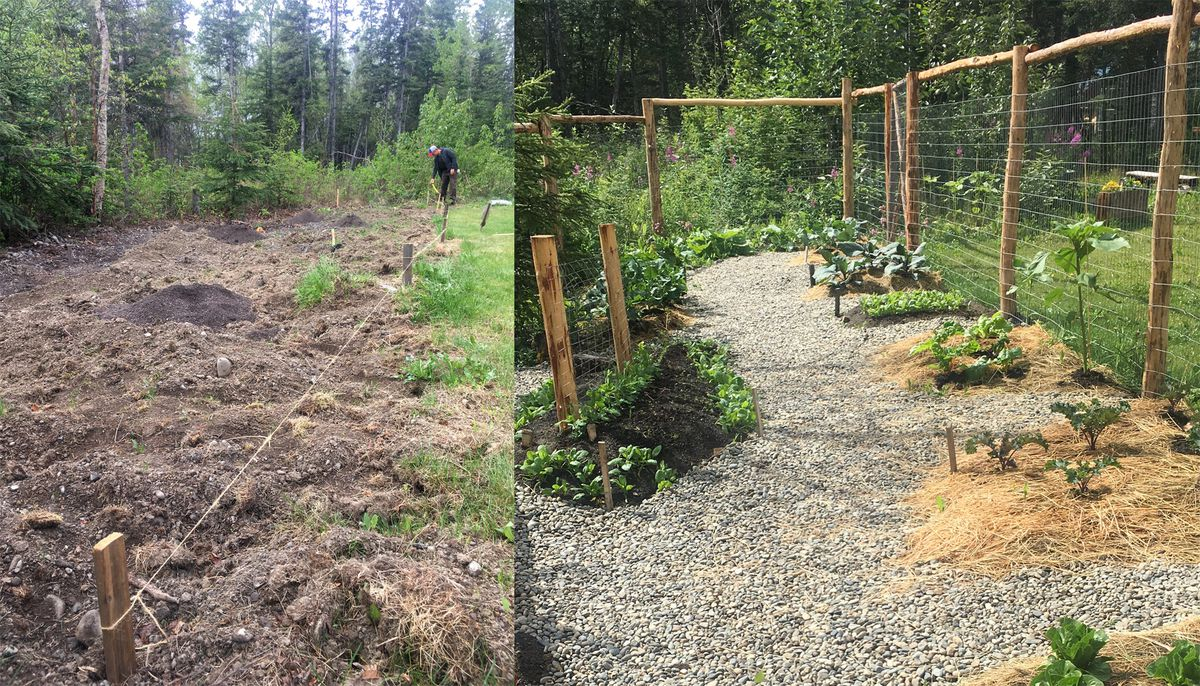Before and after photos of a new Butte neighborhood garden in the summer of 2020. (Photos by Alli Harvey)