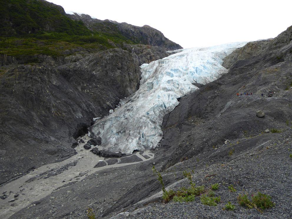 Exit Glacier, August 16, 2016. (Emily Baker / NPS)