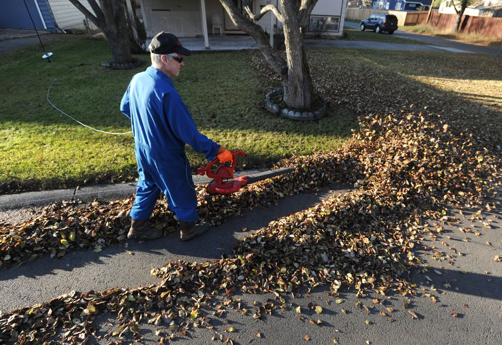 Tom Parmer helped clear leaves for a neighbor in the Turnagain Heights subdivision on Wednesday afternoon. (Bill Roth / ADN)