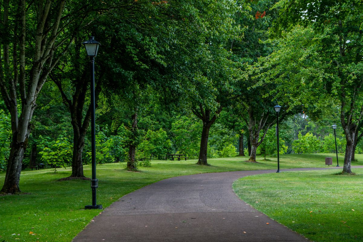 Concrete footpath in a park in Eugene, Oregon. (Getty Images)