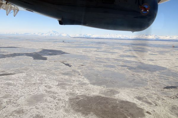Pan ice is abundant in Cook Inlet on March 9, 2017, in the general area of the natural gas leak from a Hilcorp Alaska pipeline carrying fuel gas for use by offshore platforms. Sea surface bubbles from the leak could not be detected due to the ice cover. (Jacob Cunha / Alaska Department of Fish and Game)