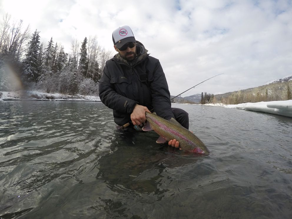 Fishing guide Dave Lisi holds a rainbow trout caught on the Kenai River this winter (2017). Lisi and Brad Kirr, also a Kenai River fishing guide, have joined forces to rally opposition to a Snow River dam as proposed by Chugach Electric Association. (Jackie Bowman)
