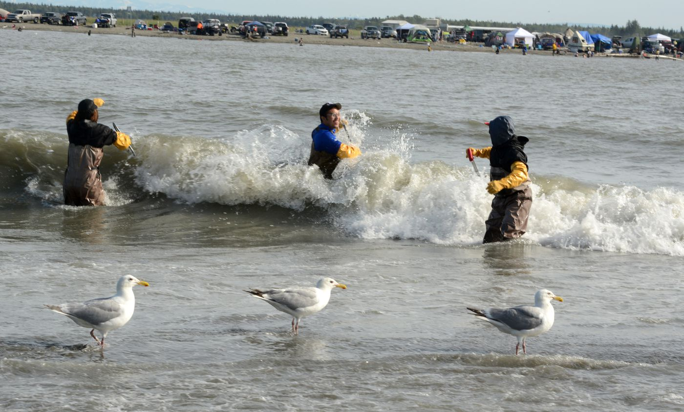 A wave splashes over a dipnetter on the Kenai River July 21, 2020. Depending on tide and winds, a raucous wave pattern sets up during parts of the day. (Anne Raup / ADN)