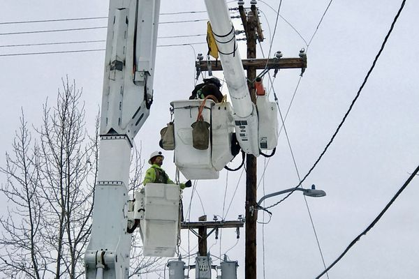 ML&P linemen work on power lines in an alley off Post Road after a 7.0 earthquake on Friday, Nov. 30, 2018. (Bill Roth / ADN)