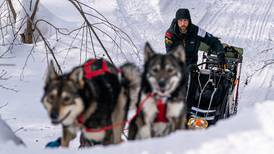 Some Iditarod veterans are seeing the trail from a new perspective