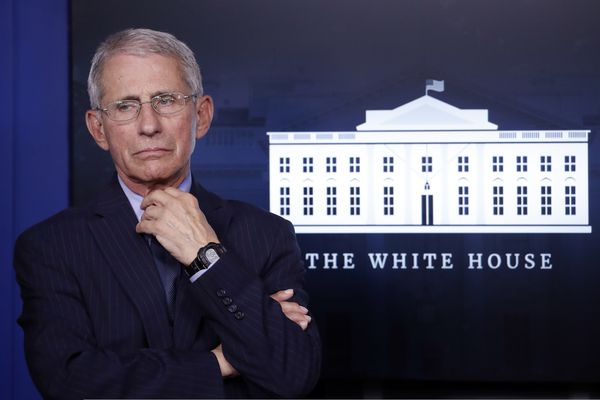 Dr. Anthony Fauci, director of the National Institute of Allergy and Infectious Diseases, listens during a briefing about the coronavirus in the James Brady Press Briefing Room of the White House, Wednesday, April 1, 2020, in Washington. (AP Photo/Alex Brandon)