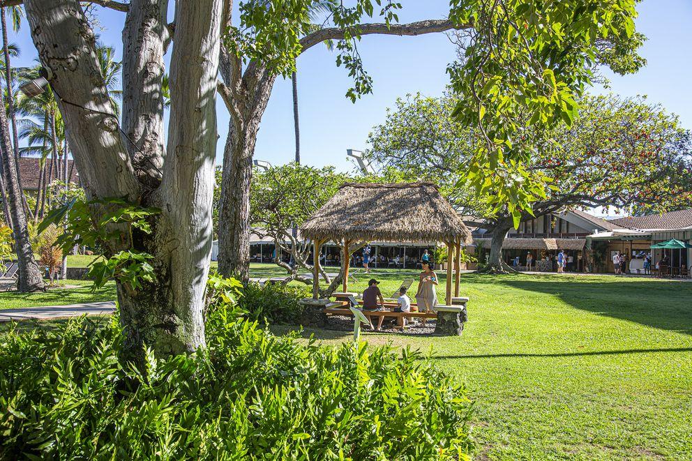 A peaceful scene at Kaʻanapali Beach Hotel on Maui. (Photo for The Washington Post by Ryan Siphers)