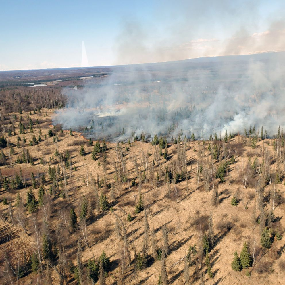 An aerial photo of the Trumpeter Fire off South Trumpeter Drive in the Point MacKenzie shows dry and snow-free conditions. (Photo by Alaska Division of Forestry helitack)