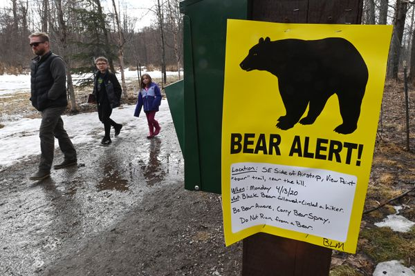 A family walks past a Bear Alert sign posted at the BLM Campbell Tract on Sunday, April 19, 2020. The sign stated the location of the sighting of black bear that