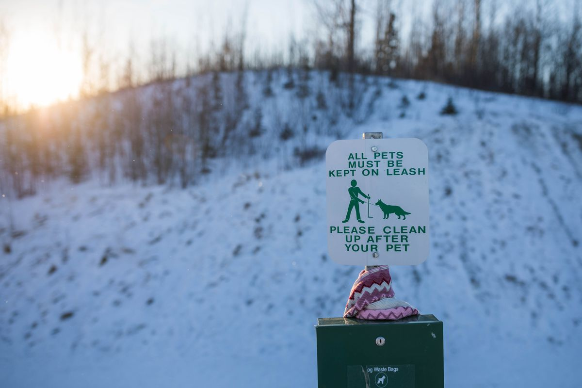 On Jan. 6 a sign at the Crevasse-Moraine Trailhead in Palmer reminds pet owners to leash their pets while using the trails. The trails are adjacent to areas used by trappers, and occasionally dogs can be caught in a trap or snare. (Loren Holmes / ADN archive 2017)