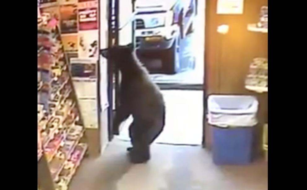 Still from Liquor Barrel surveillance video