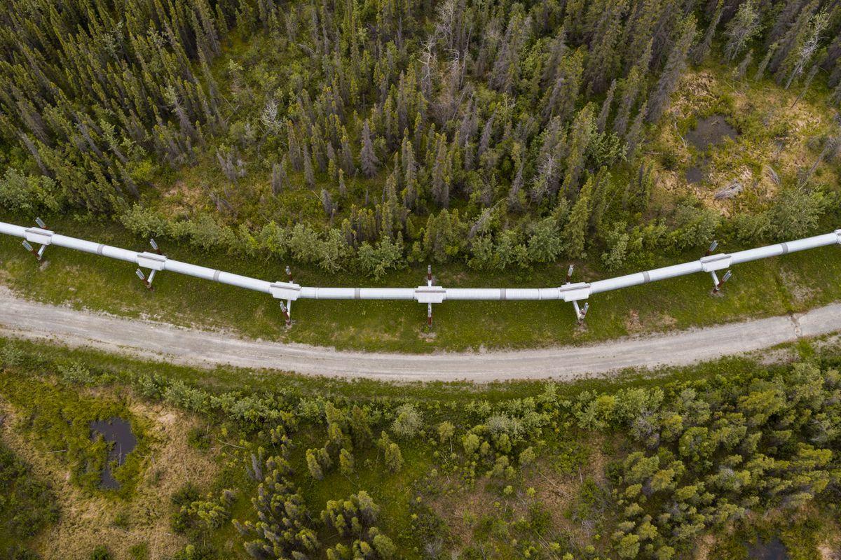An aerial view of the trans-Alaska oil pipeline near Copper Center on June 29, 2017. (Loren Holmes / ADN)