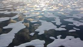 Arctic sea ice shrinks to lowest June extent ever observed