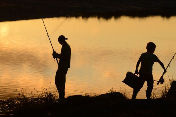 Nicholas Snow and his son Nicholas Snow fish for Coho Salmon in the evening light at Ship Creek in downtown Anchorage, AK on Thursday, August 16, 2018. (Bob Hallinen / ADN)