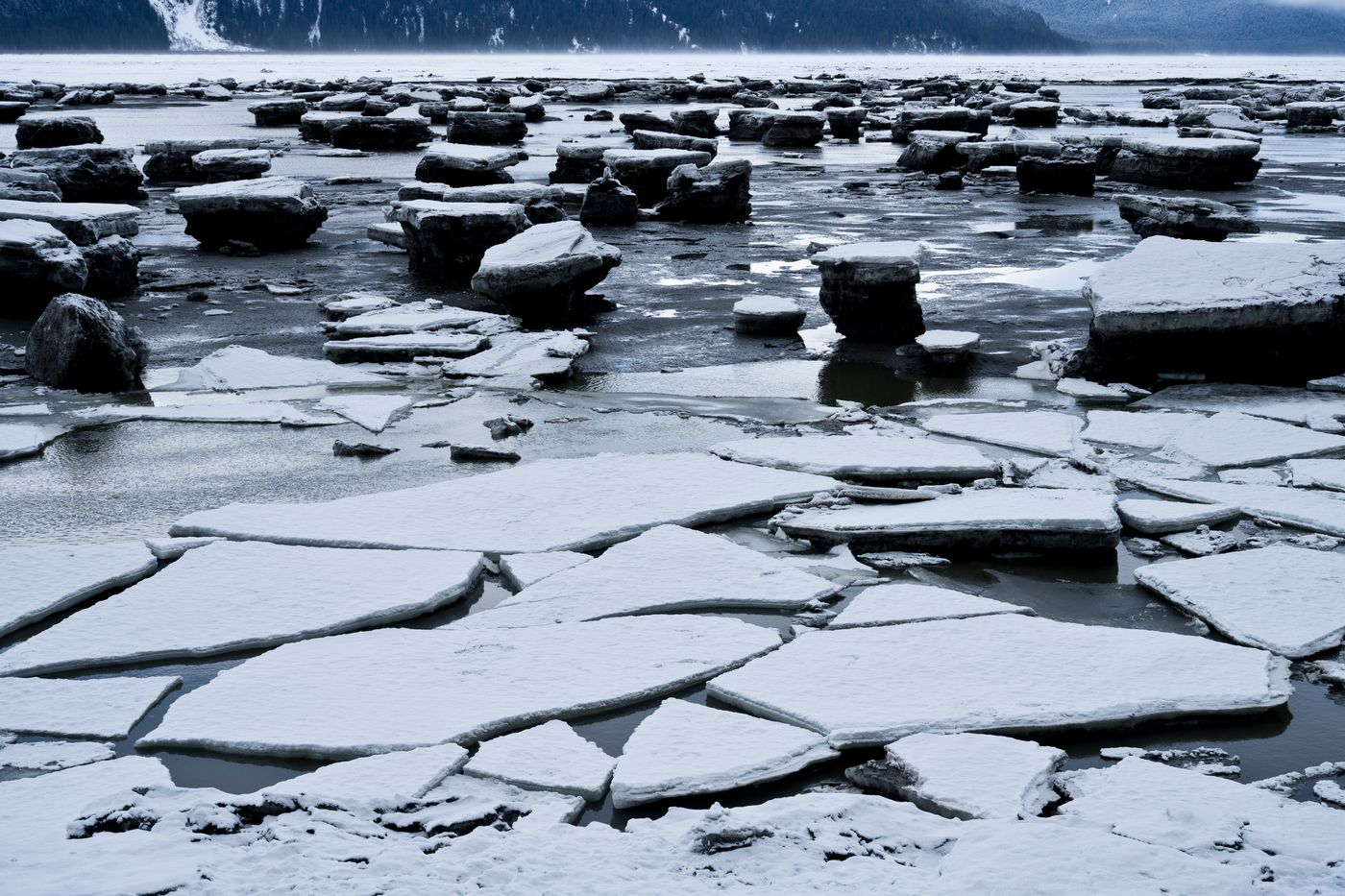 Ice pans collect on the shoreline of Turnagain Arm near Portage on April 3, 2020. (Marc Lester / ADN)