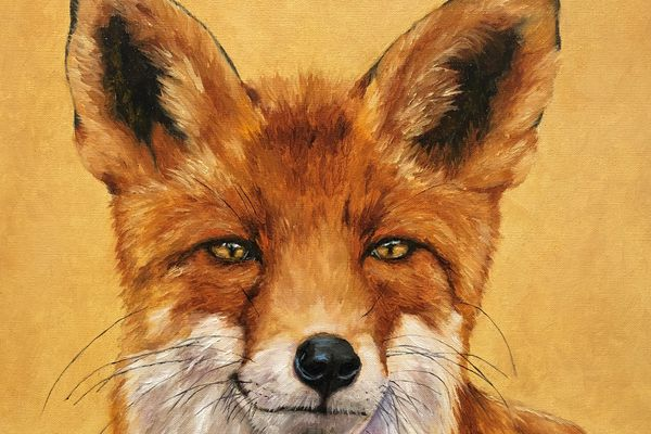 Wildlife paintings by Dan Twitchell will be on display at Hotel Captain Cook in March.