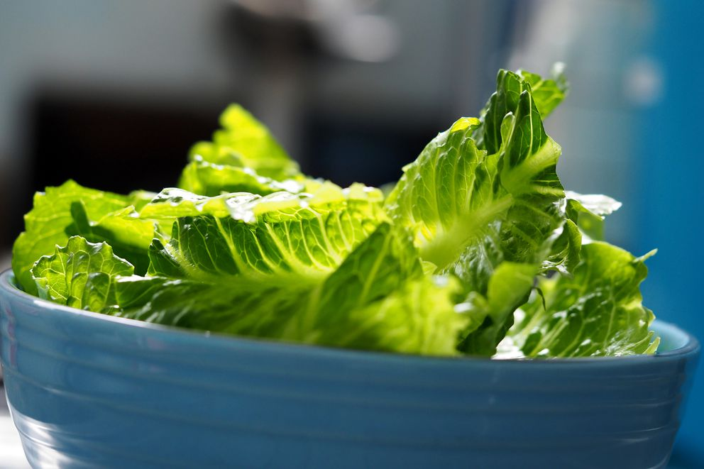 Health officials are urging consumers to throw out store-bought romaine lettuce, if they don't know its origin, after an E. coli outbreak. (Dreamstime)
