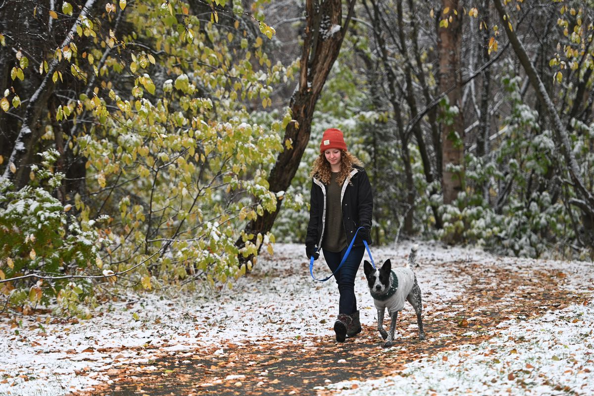 Kaila East walks with her dog Sockeye after the first snow on Sunday, Oct. 18, 2020. East who is a health care worker tested positive for COVID-19 in June and is dealing with health issues months later. (Bill Roth / ADN)